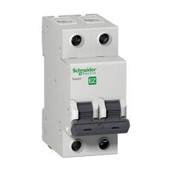 Автоматический выключатель Schneider Electric Easy 9 2 полюса C6 EZ9F34206