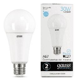 Светодиодная лампа Gauss LED Elementary 30Вт. Е27 (холодный белый свет) 73239