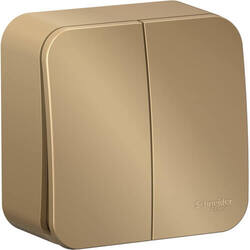 Выключатель 2кл Blanca О/У 10А с изолир. пластиной (титан) BLNVA105014