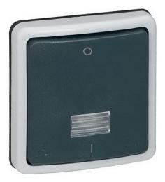 Одноклавишный двухполюсный переключатель на два направления с подсветкой IP66 Plexo 10 без ламп 090484
