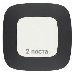 Рамка двухместная Valena Allure (Матовый черный) 754402