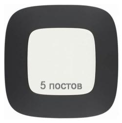 Рамка пятиместная Valena Allure (Матовый черный) 754405