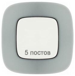 Рамка пятиместная Valena Allure (Полированная сталь) 755505