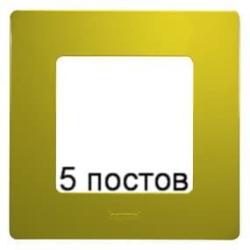 Рамка 5-ая Etika (зеленый папоротник) 672545