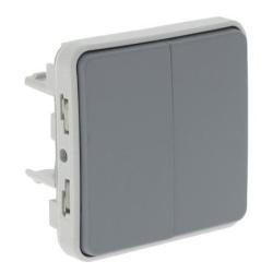 Переключатель двухклавишный Plexo IP55 (цвет серый)